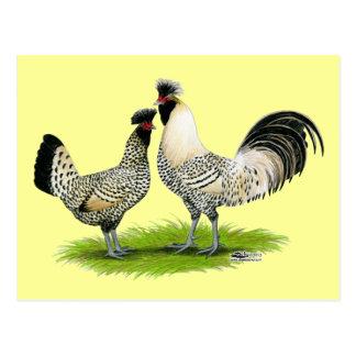 SahneBrabanter Hühner Postkarten