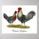 SahneLegbar Hühner Posterdruck
