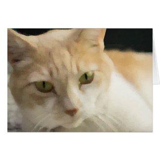 Sahnetabby-Katzen-Gruß-Karten-freier Raum nach Karte