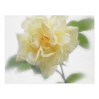 Sahnige gelbe Rose Postkarte