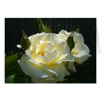 Sahnige süße Rose Karte