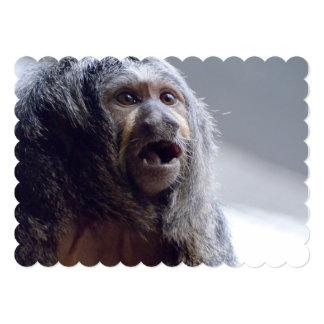 Saki Affe-Gesicht 12,7 X 17,8 Cm Einladungskarte