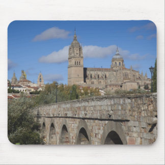 Salamanca-Kathedralen, angesehen von Puente Romano Mousepad