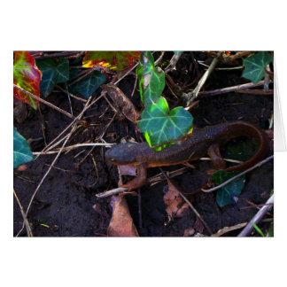 Salamander, der die Welt erforscht Karte