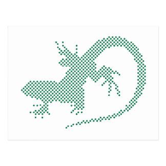 Salamander Postkarte