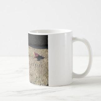 Salem-Masse Kaffeetasse
