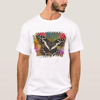 Sammamish, tropischer Schmetterling 10 Washingtons T-Shirt