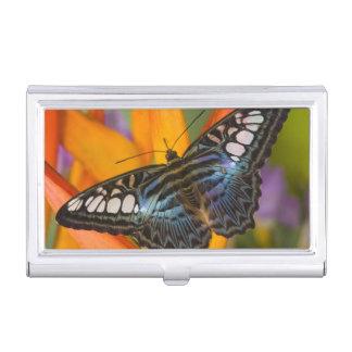 Sammamish, tropischer Schmetterling 24 Washingtons Visitenkarten Etui