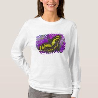 Sammamish, tropischer Schmetterling 31 Washingtons T-Shirt