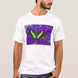 Sammamish, tropischer Schmetterling 4 Washingtons T-Shirt