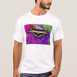 Sammamish, tropischer Schmetterling 6 Washingtons T-Shirt