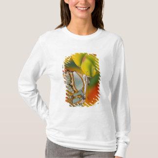 Sammamish, tropischer Schmetterling 7 Washingtons T-Shirt