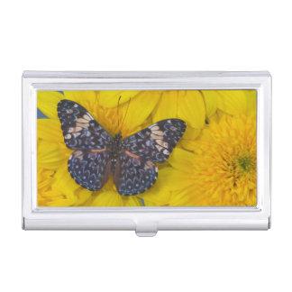Sammamish Washington Fotografie von Schmetterling Visitenkarten Dose