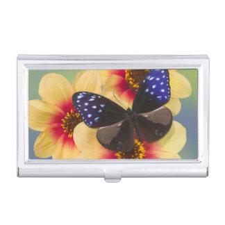 Sammamish Washington Fotografie von Schmetterling Visitenkarten Etui