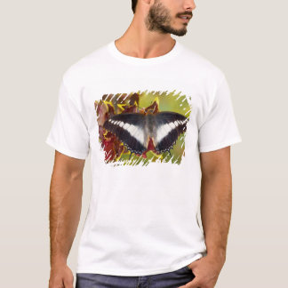 Sammamish, Washington. Tropische Schmetterlinge 16 T-Shirt