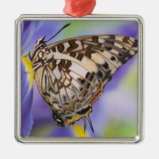 Sammamish, Washington. Tropische Schmetterlinge 22 Quadratisches Silberfarbenes Ornament