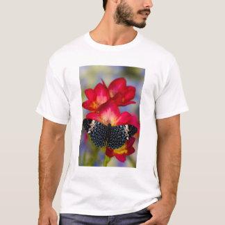 Sammamish Washington tropische Schmetterlinge 2 T-Shirt