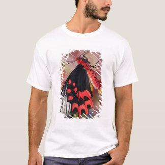 Sammamish, Washington. Tropische Schmetterlinge 3 T-Shirt