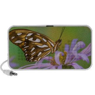 Sammamish, Washington. Tropische Schmetterlinge 40 Mini Lautsprecher