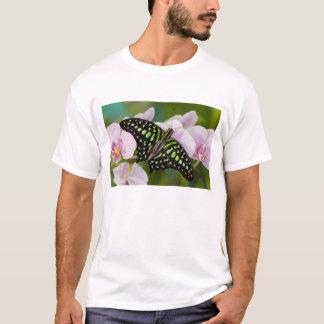 Sammamish, Washington. Tropische Schmetterlinge 46 T-Shirt