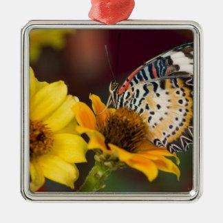 Sammamish, Washington. Tropische Schmetterlinge 66 Quadratisches Silberfarbenes Ornament