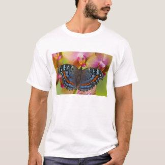 Sammamish Washington tropischer Schmetterling 2 T-Shirt