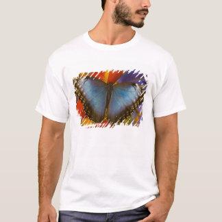 Sammamish Washington tropischer Schmetterling 9 T-Shirt