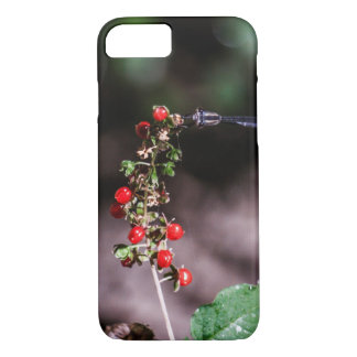Sammeln-Beeren iPhone 8/7 Hülle