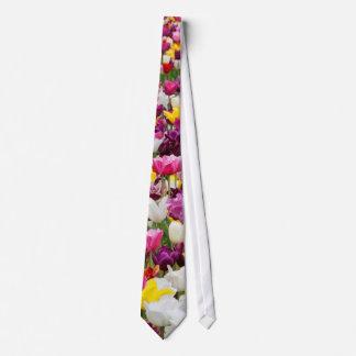 Sammlung verschiedene Tulpen in Holland Krawatte