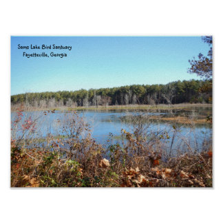 Sams See-Vogelschutzgebiet-Plakat Poster