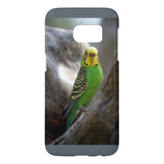 Samsung-Galaxie S7, kaum dort Parakeet-Entwurf
