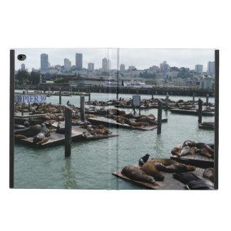 San Francisco und Seelöwe-Stadt-Skyline des