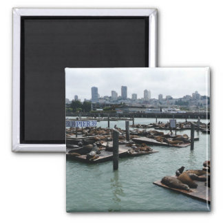 San Francisco und Seelöwe-Stadt-Skyline des Quadratischer Magnet