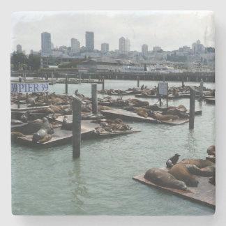 San Francisco und Seelöwe-Stadt-Skyline des Steinuntersetzer
