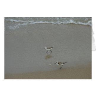 Sand-Pfeifer-Foto und Karte durch Lorette Starr