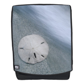 Sanddollar auf Insel des Strand-| Sanibel, Florida Rucksack