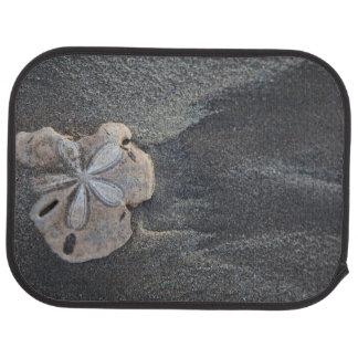 Sanddollar auf Sand Autofußmatte