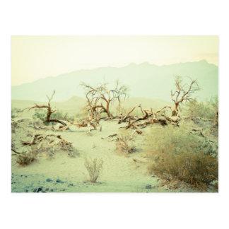 Sanddünen von Death Valley Postkarte