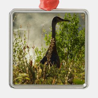 Sandhill Kran in Elch-Teichen in großartigem Teton Silbernes Ornament