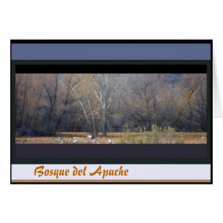 Sandhill Kran-Vogel-Tier-Tier-Fotografie Karte