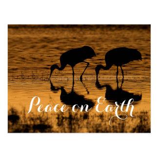 Sandhill Kräne, Weltfrieden Postkarte