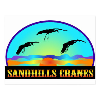 Sandhills Kräne Postkarte