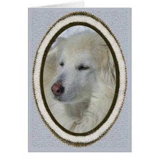 *Sandy Hund - Entschuldigung/trauriges Karte
