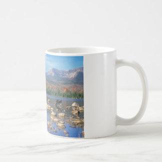 Sandy-Strom-Teich und Elche Kaffeetasse
