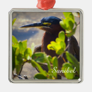 Sanibel Vogelbeobachtung-Verzierung Silbernes Ornament