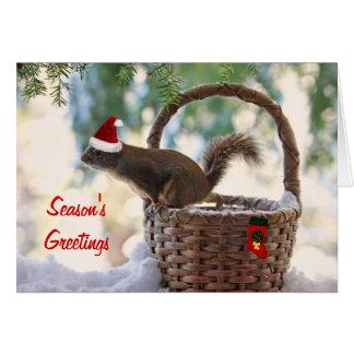 Sankt-Eichhörnchen im Snowy-Weihnachtskorb Karte