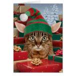 Sankt Elf-Katze Weihnachtskarte