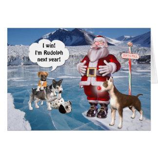 Sankt ist ein Bullterrier-Hund Karte