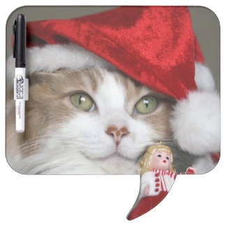 Sankt-Katze - Weihnachtskatze - niedliche Kätzchen Memoboard