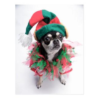 Sankt kleiner Helfer-Elf-Hund Postkarte